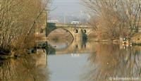 Nehir yatakları yıllardır temizlenmeyince, sel suları kabarma yapıyor.5962