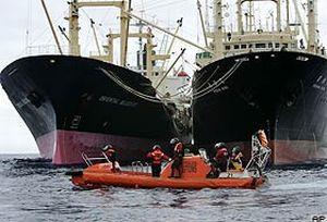 Greenpeace üyeleri Akdeniz'de saldırıya uğradı.18688