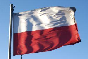 Polonya'dan ABD'ye şartlı destek.16060