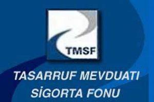 TMSF, Rumeli Sigorta'yı satışa çıkardı.8507