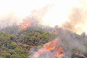 Mersin'de çamlık alandaki orman yangını 2 can aldı.11517