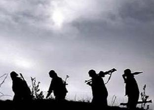 Bingöl'de 1'i kadın 2 terörist kısdırıldı!.16575