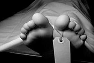 Meksika'da domuz gribinden 44 ölüm.7697