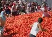 Şili'de domates savaşı çıktı!